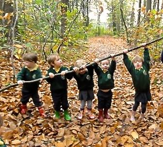 Balade en forêt avec la Forest International School