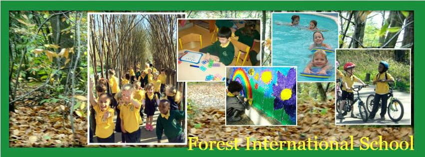 Activités à la Forest International School