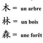 Les bénéfices du chinois pour les enfants