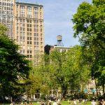 Jeunes en groupe dans un parc de new york