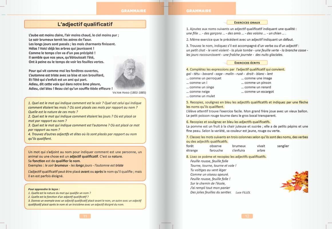 Exemple de manuel pour la scolarité à distance des cours Griffon en CE2