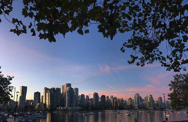 Photo de Vancouver, où se passe le programme Anglais+Job de ILAC