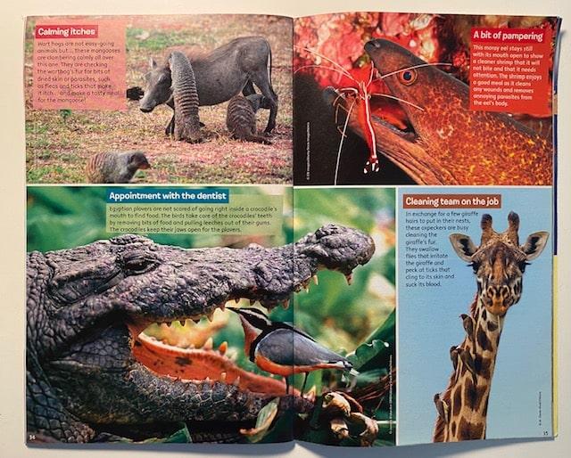 Extrait du magazine Sciences et Nature Discovery Box