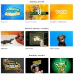 Grâce à ses nombreuses vidéos anglophones le National Geographic Kids fait partie des meilleurs sites éducatifs