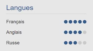 Modèle d'un CV avec des niveaux clairement indiqués dans 3 langues grâce à des points dessinés pour chaque niveau